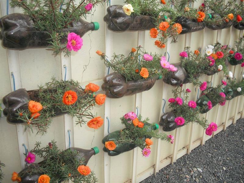 jardim com garrafa pet na parede