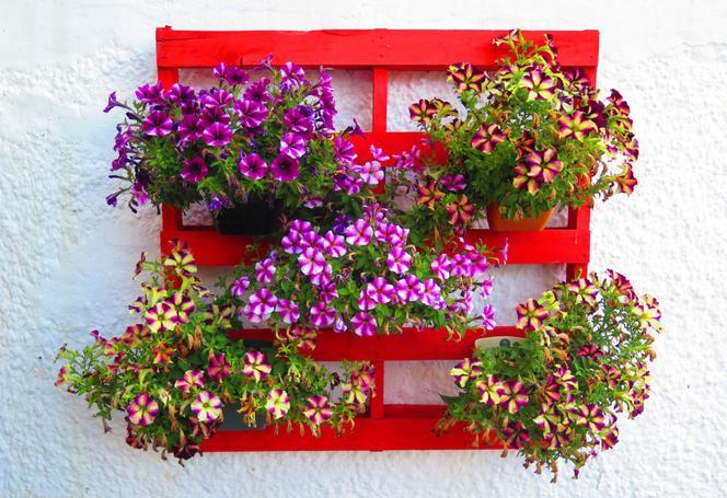 paletes com flores naturais