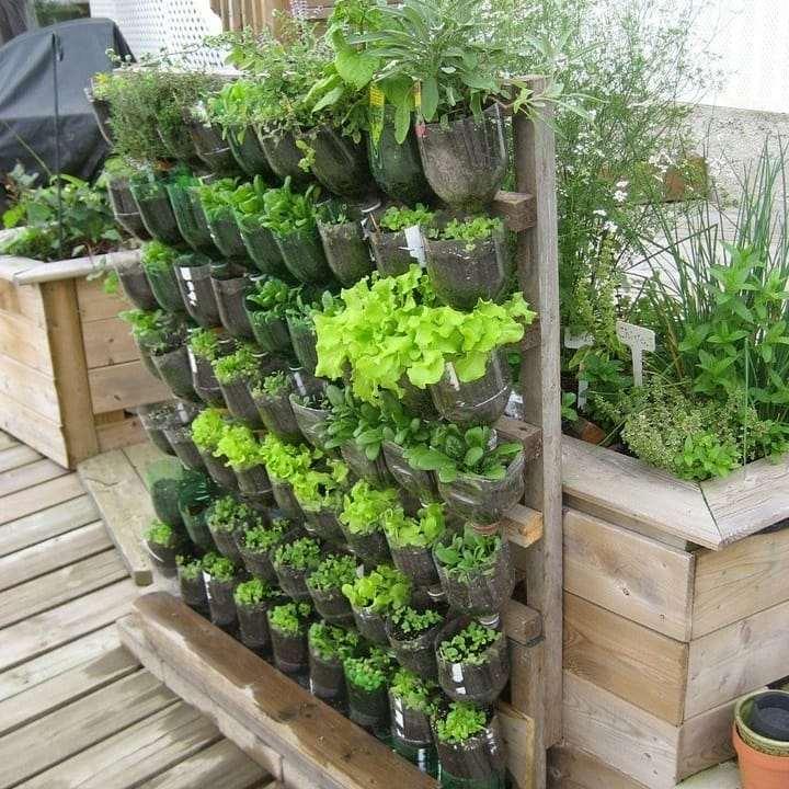 horta vertical com garrafa pet e pallet