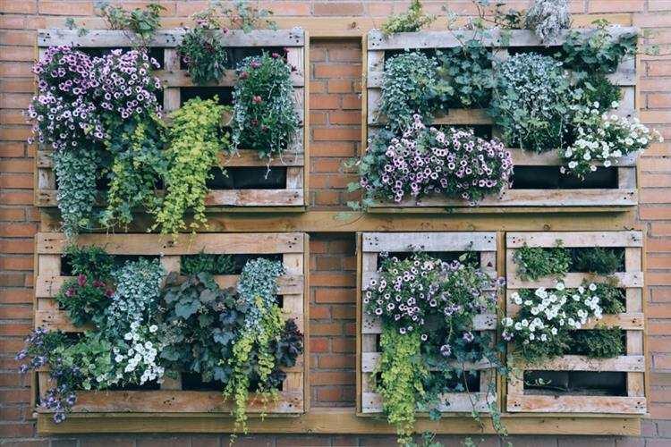 paletes com flores na parede
