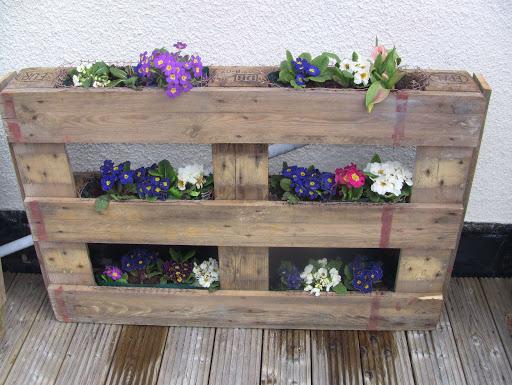 paletes com flores no jardim