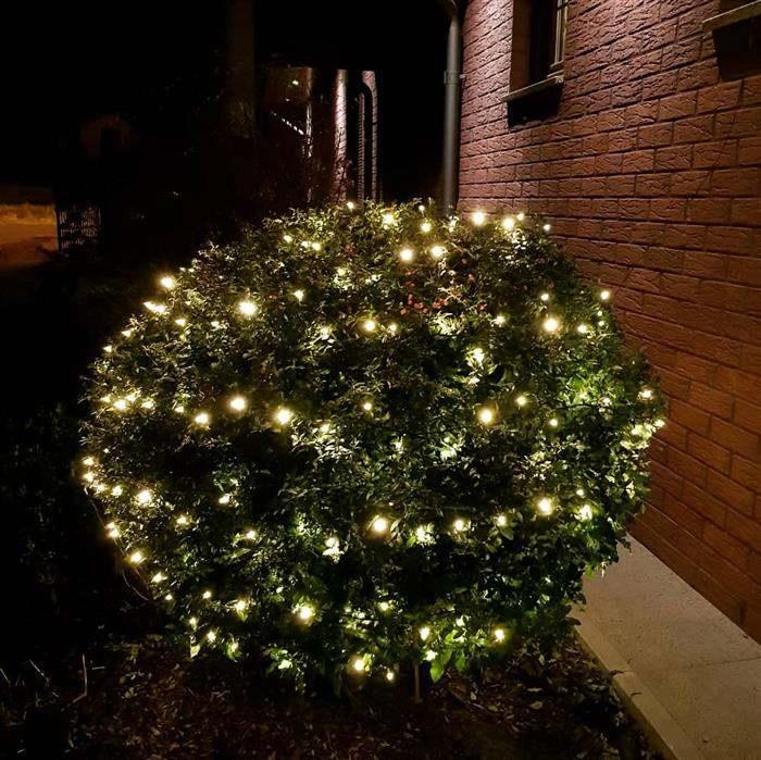 arbusto com luz de natal