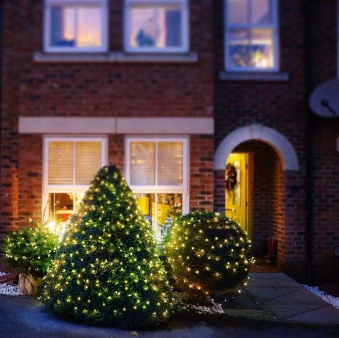 arbustos decorados para natal