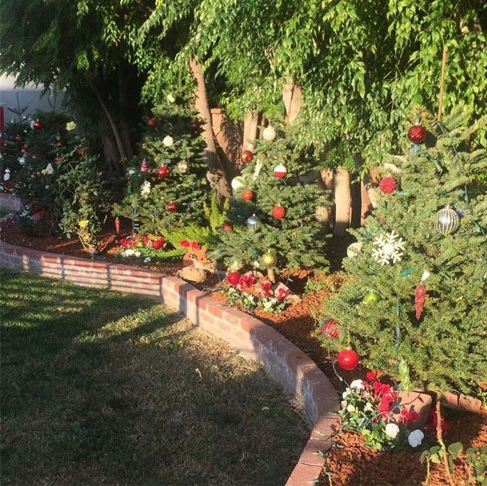 decoração com vermelho para jardim
