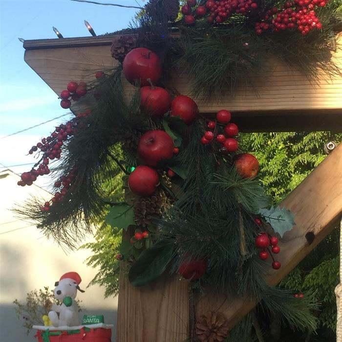 decoração de natal com frutas