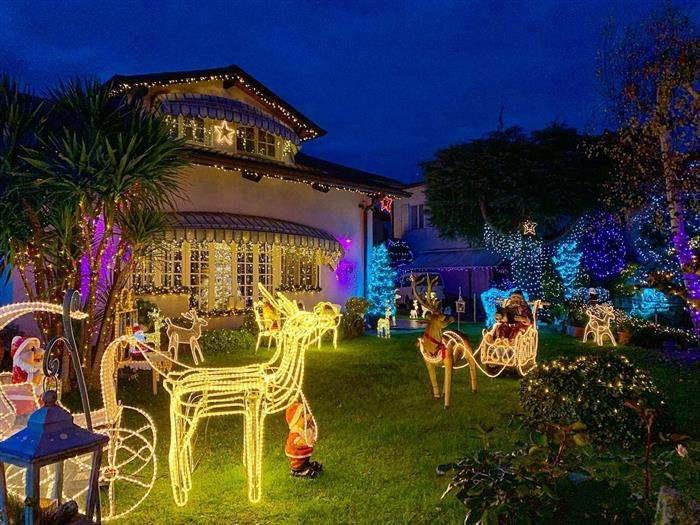 enfeites luminosos de natal para jardim