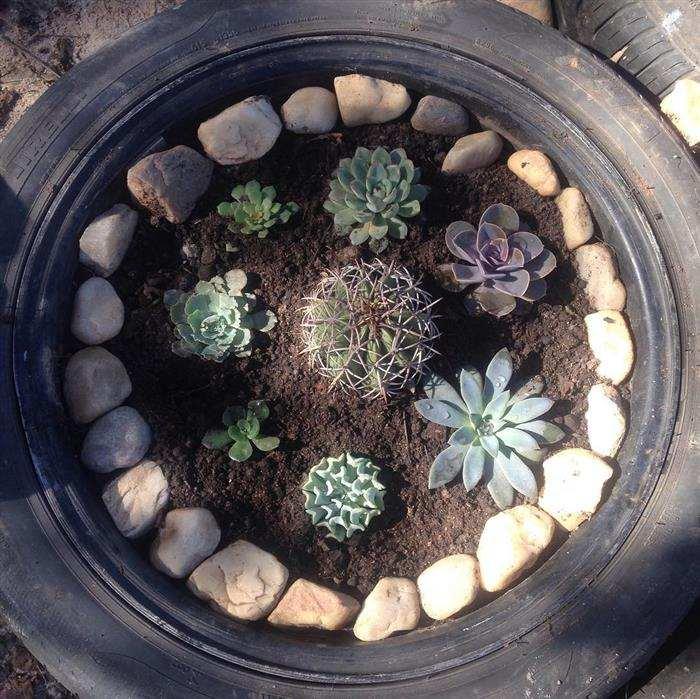 jardim com pneus e pedras