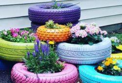 pneus no jardim com plantas