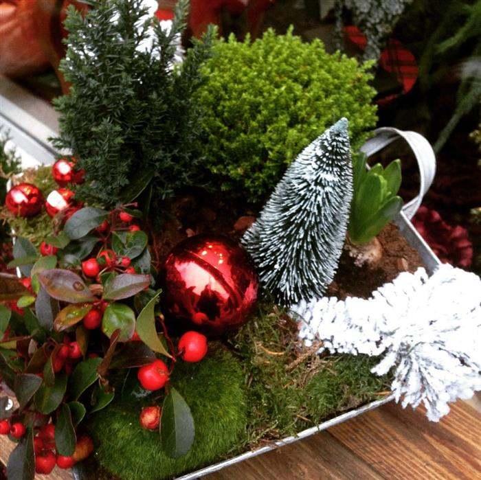 mini jardim decorado para natal