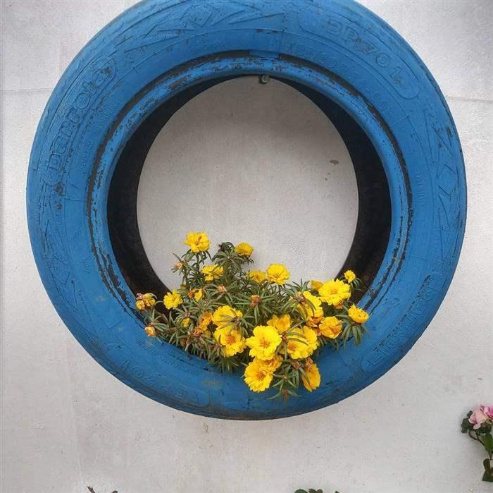 pneu com pintura parea plantas