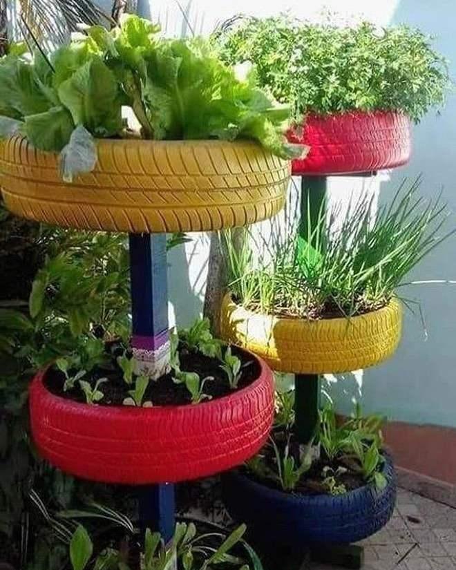 pneu para horta