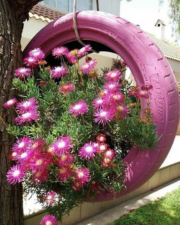 pneu suspenso com jardim