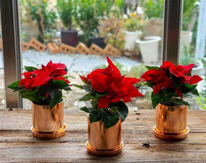 vasos decorativos para natal