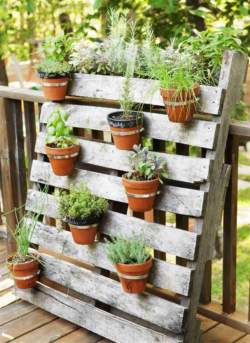 jardim vertical de palete e vasos de barro