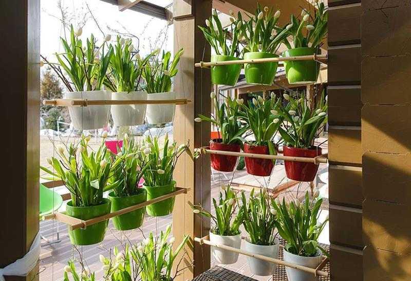 Vasos para jardim vertical coloridos