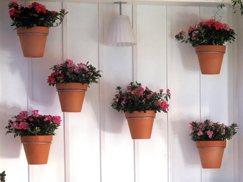 Tipos de vasos para jardim vertical