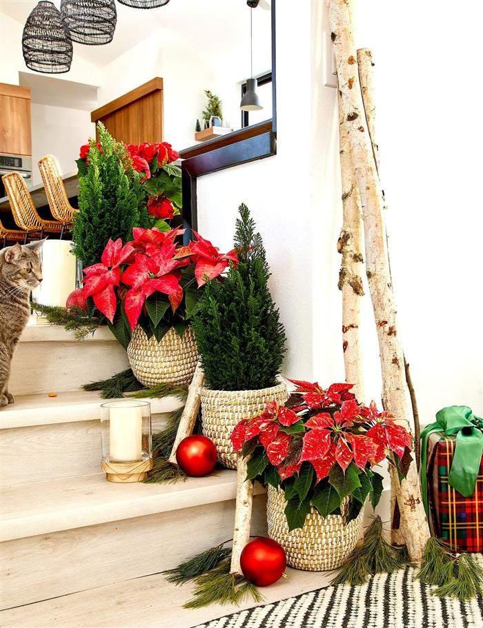 escadas decoradas para o natal
