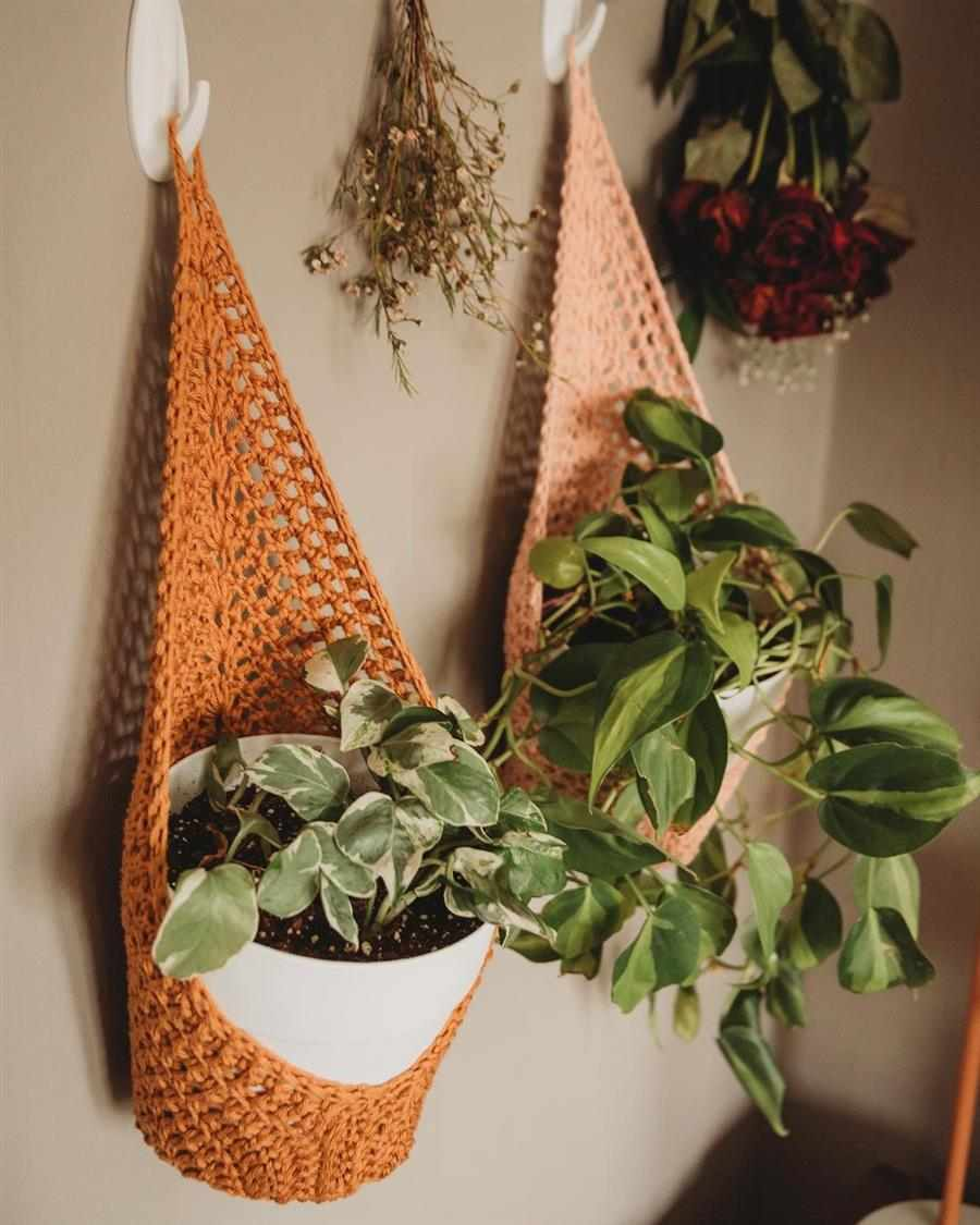 cachepo para plantas