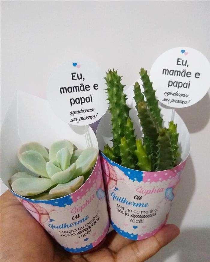 plantinhas-para-cha-de-bebe
