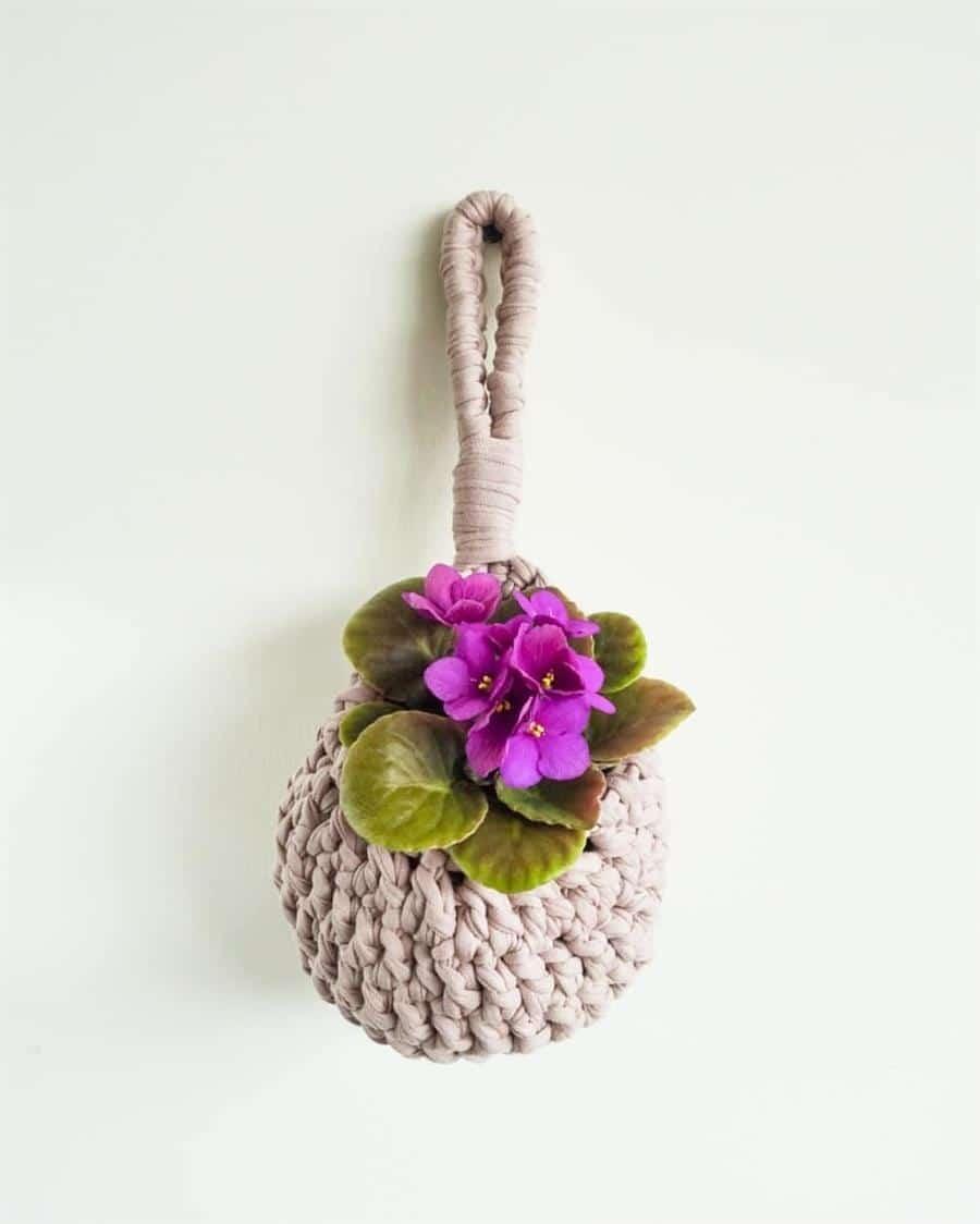 para vaso de violeta