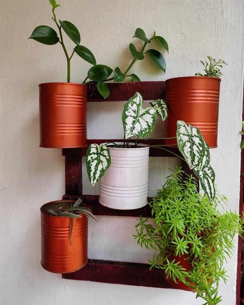 Vasos para jardim vertical de latas