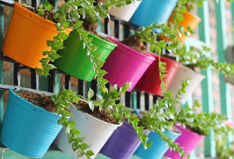 Vasos coloridos para jardim vertical