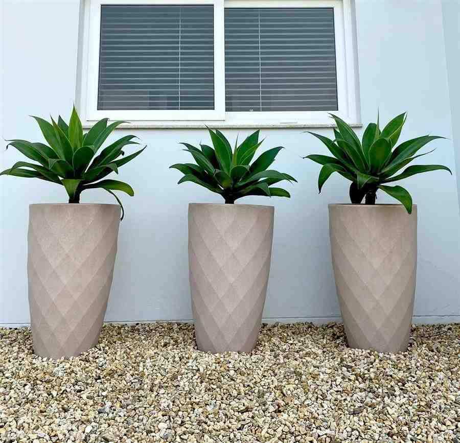 Jardim com vasos de plantas