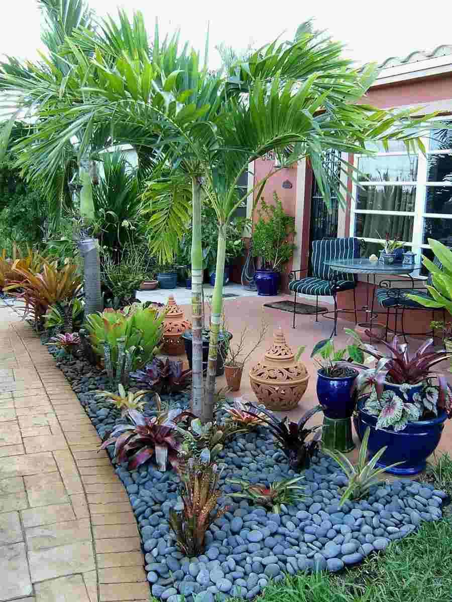 plantas e pedra cinza