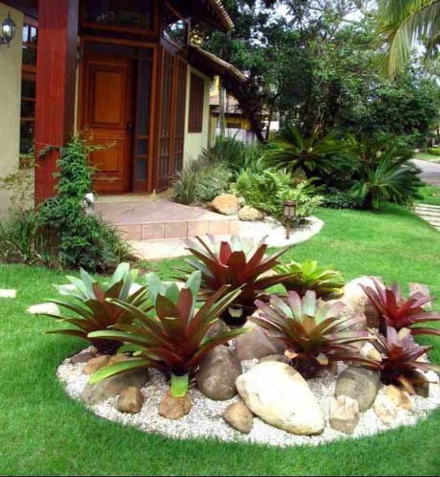 Jardim com bromélias e pedras