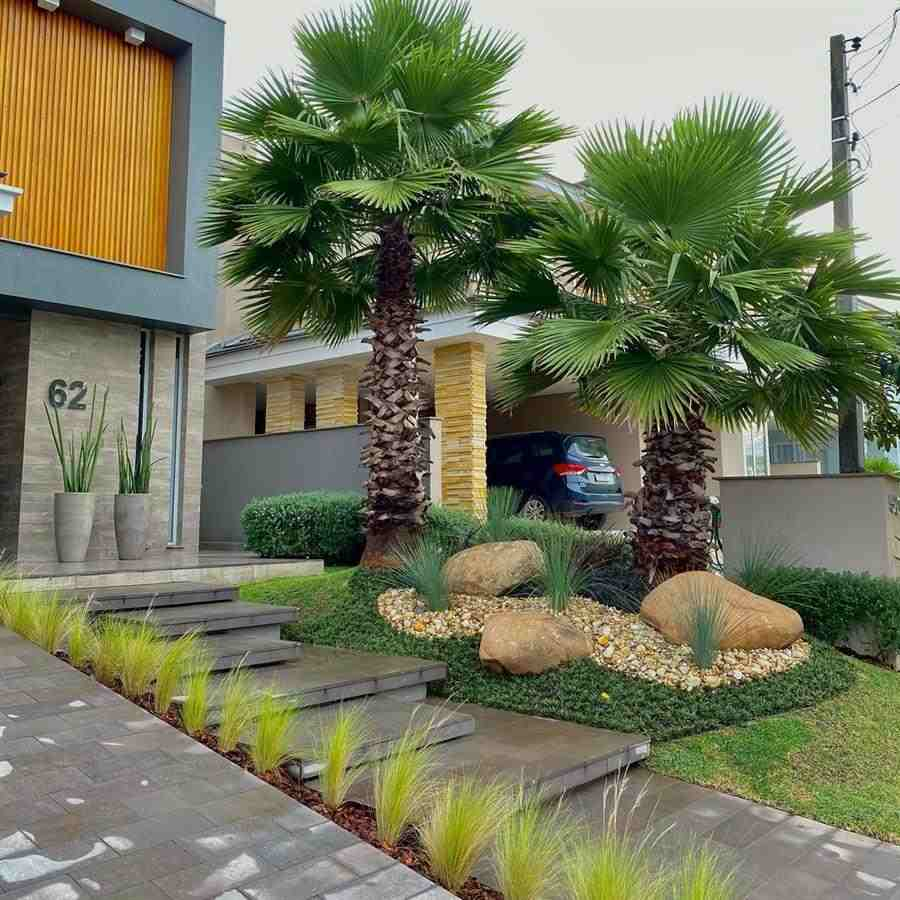 Jardim com palmeiras