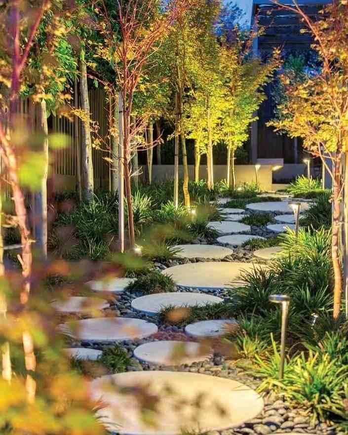 jardim iluminado a noite
