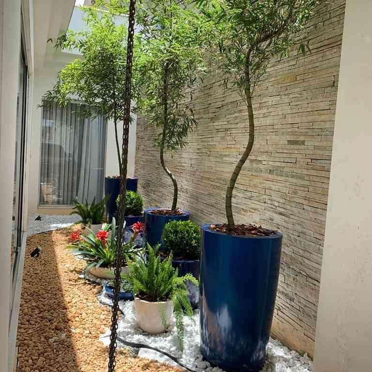 Jardim de inverno com vasos de plantas