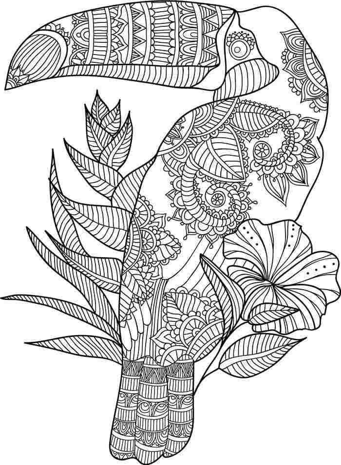 desenho com detalhes