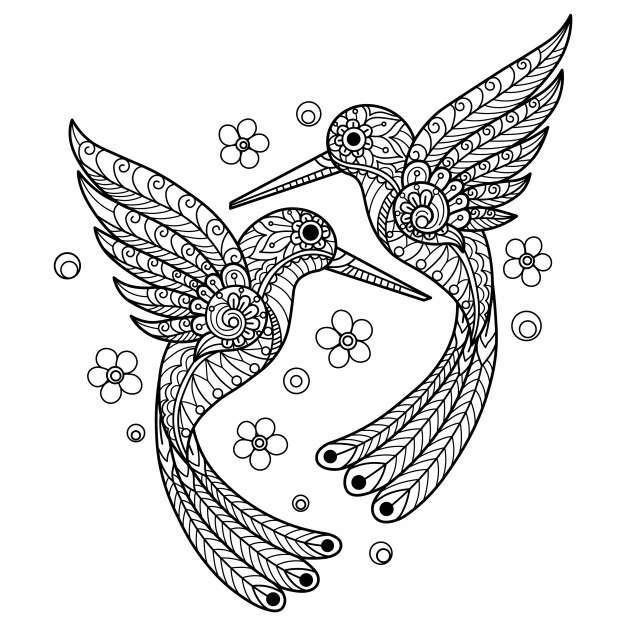 desenho de beija flor