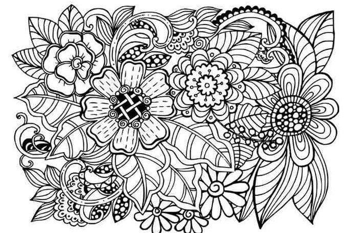 imagem adulta para colorir