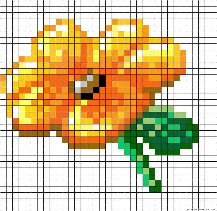 flor laranja e amarelo