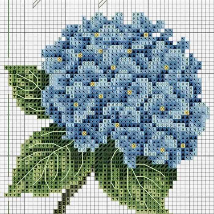 buque de flores azuis