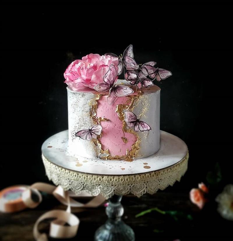 bolo de borboleta aniversário