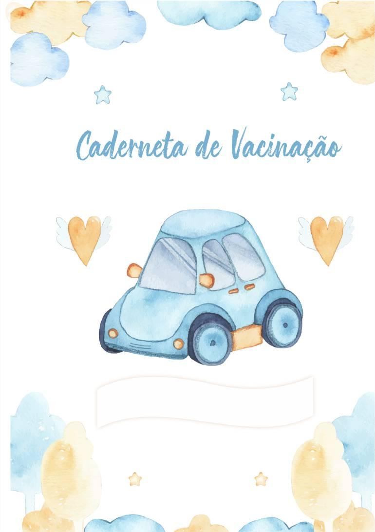 caderneta de vacinação carro menino