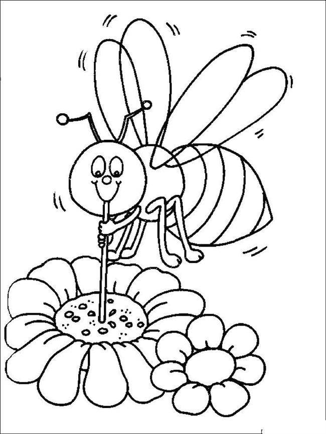 abelha com polen
