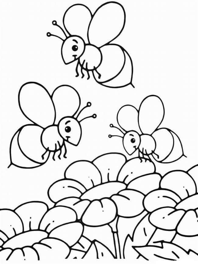 desenhos para colorir abelha e flor