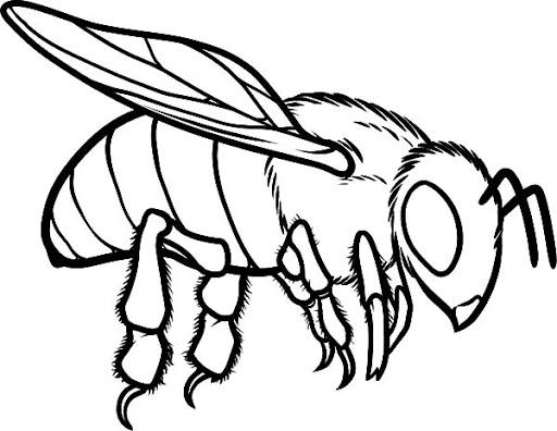 rosto de abelha para colorir