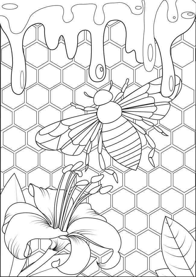 colmeia de abelha para colorir