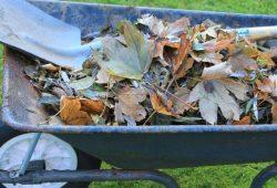 como funciona a compostagem